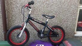 Boys Universal GPX Bike