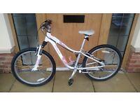 "Girls Specialized 24"" wheel mountain bike"