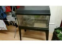 Juwl fish tank