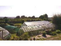 Head Gardener for Organic Kitchen Garden in Country Retreat close to London