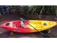 Feel Free Single Sit on Kayak