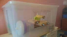 Hamster Cage very large custom made plus accessories