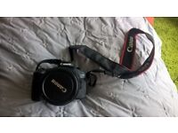 Canon EOS 60D Body and Lens (Canon EF-S 18-135mm f/3.5-5.6 IS STM Lens)