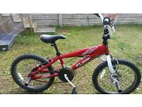 Barracuda bmx