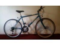 Regency Men's Mountain Bike