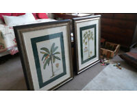 Pair of large prints of tropical palm trees - hand framed