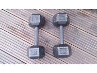 Hex Metal 12.5kg Dumbbells