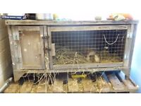 **still available 16th oct** Guinea pig or rabbit 2 compartment Hutch