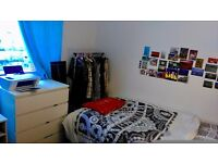 Student Accommodation For January, nice room £340 a month including bills
