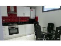 Exquisite Newly Built 2/3 Bedroom Apartment with Large Balcony Located in Whitechapel