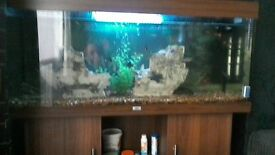 4 foot juwell aquarium on matching stand