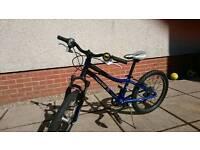 """Specialized Hotrock 20"""" mountain boys bike"""