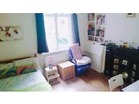 Large double room in flat share with garden Hornsey, Harringey Ladder N8 area