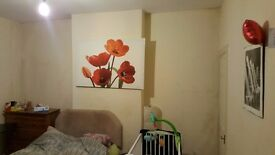 DOUBLE ROOM TO RENT IN A STUDENT FRIENDLY AREA......PROXIMITY TO UNI AND CITY CENTRE..^%~~~~####