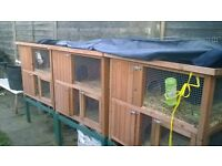 rabbit hutches', nearly new condition