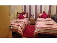 Single pine beds