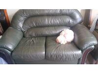Sofa (2 seater green leather sofa)