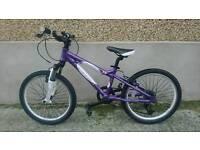 """Girls carrera 20"""" mountain bike"""