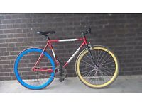 Fuji Single Speed Bike in Full Working Order Size 54/21inch