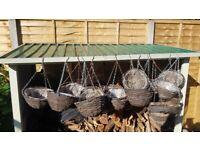 Hanging Basket assortment