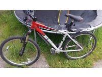 Giant mountain bike