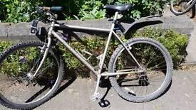 Retro marin mountain bike