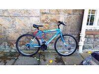 Blue Mountain Bike For Sale