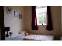 Furnished room, all bill included, great location