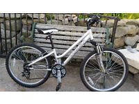 Ridgeback Girls Destiny Mountain Bike 24""