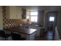 SHORT TERM Stunning 1 Bedroom Flat Available Immediately!!
