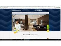 Cleaning Business Website Available