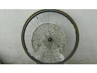 Campagnolo rear wheel shimano ultrega hub