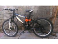 "Boys carrera mountain bike 20"""
