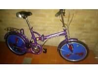 Folding adults bike