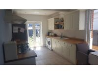 Lovely, sunny, single room available to rent in a shared professional house