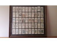 Players Dickens Cigarette Card collection