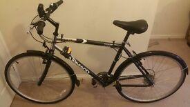 Ammaco Oasis Bicycle