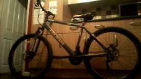 BOSS MOUNTAIN BIKE VCG