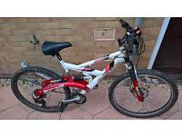 Barracuda response mountain bike 21 gears front disc
