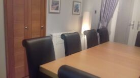 Extendable Dining Table and 8 Chairs - SOLD