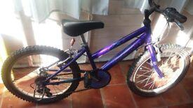 Girl's Raleigh Bike, purple - Age 6-9?