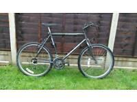Mens Townsend mountain bike