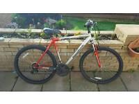 Reebok edge runner mountain bike