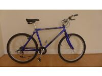 IMMACULATE GIANT CEDEX BIKE + FREE DELIVERY