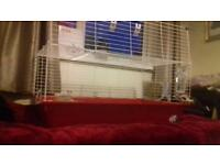Guinea pig rabbit cages. Indoor cage