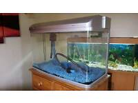 Fish tank with built in filter & gravel 2.5 foot