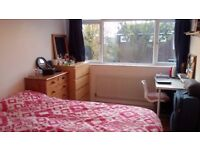 Bright Double room in house share in Southfields