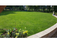 Garden Services - Professional gardener - Gardening and landscaping - Maintenance and grass cutting