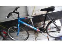 ** 3 X Bike / Bikes For Sale **
