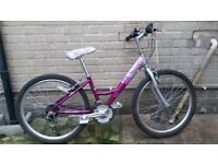 Girls Raleigh Starz Mountain Bike